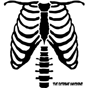 glow in the dark skeleton ribcage