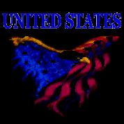United States Eagle Flag