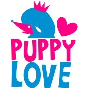 puppy love with cute french poodle and crown