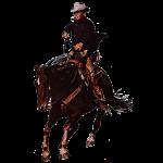 Vintage Cowboy