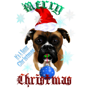 Wonderful-Christmas Boxer Dog
