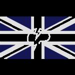 flagfinal