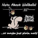 wallballsquirrel