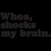 Whoa, Shocks My Brain, Phish, MSG
