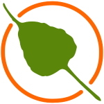Bodhi Logo Simple