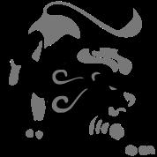 Leo Sign Zodiac
