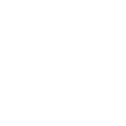 Detroit 313 Motor City