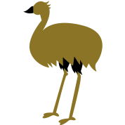long legged emu bird