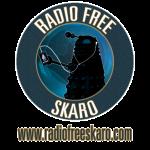 radiofreeskarologo2011navy