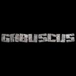 Gabuscus Rock Stone