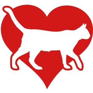 love heart cats and kitty