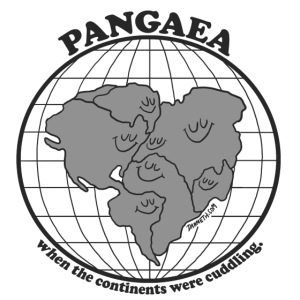 Pangaea Grey by Dan Meth