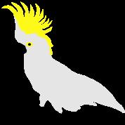 Cockatoo, Real Punk, Parrot