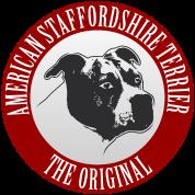 AmStaff - American Staffordshire Terrier