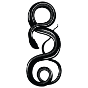 Curling Snake HD Design
