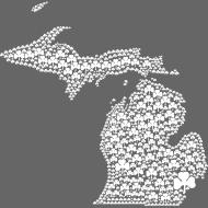Design ~ Michigan Shamrocks