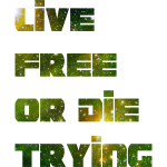 Live Free HD Design
