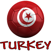Team Turkey FIFA World Cup