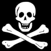 Edward England Pirate Flag