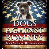 Design ~ pitbulldogsagainstromneyflag