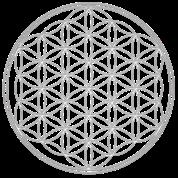 Flower of Life - FEEL THE ENERGY, Sacred Symbol, Energy Symbol, Harmony, Balance