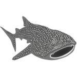 save the whale sharks shark fish diver diving