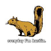 Hustlin Squirrel