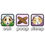 Eat Poop Sleep Guinea Pig