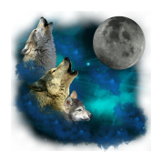 Northern Lights  Wolfs family moon 2