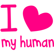 I LOVE MY HUMAN perfect for pet owners and lovers