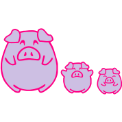 three cute pigs