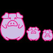 three cute pigs