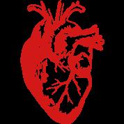 Heart Realistic / Art