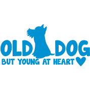 OLD DOG but young at heart! with puppy and hearts