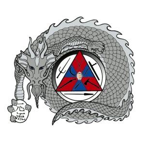 dragon 2 color for web