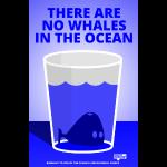 Whales in the Ocean: Ptermclean - peter mclean