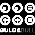 bulgebull_equality_2