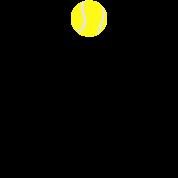Tennis racket and tennis ball, tennis raquet
