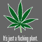 Just A Plant W