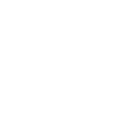 Gun Wavin' New Haven (White)