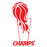 miami_heat_nba_champions_shirt