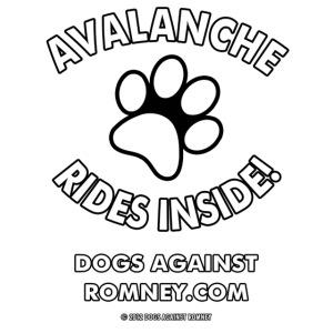 avalanche w m