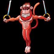 Olympic Flying Rings Monkey
