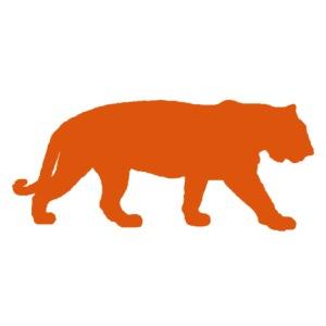 bigtiger orange