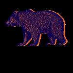 bearsongray