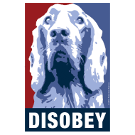 Design ~ Official DAR Special Edition DISOBEY Blue