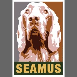 Official DAR Special Edition SEAMUS Brown