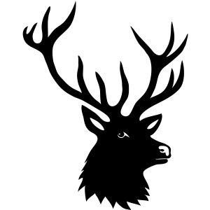 stag deer moose elk antler antlers horn horns buck