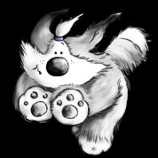 Flying Bearded Collie - dog - herding dog