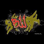 Jiu Jitsu - BJJ Graffiti